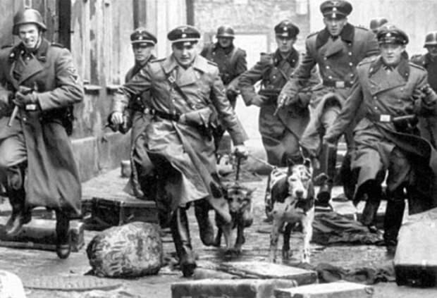 Зачем Сталин вывез в СССР архивы гестапо