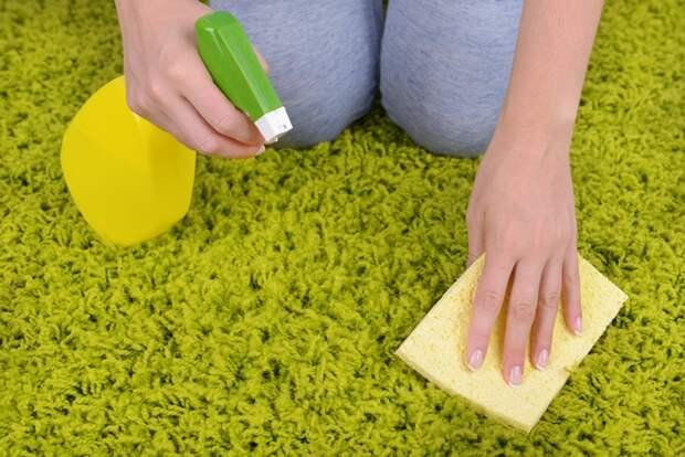 Как поддерживать ковер в чистоте