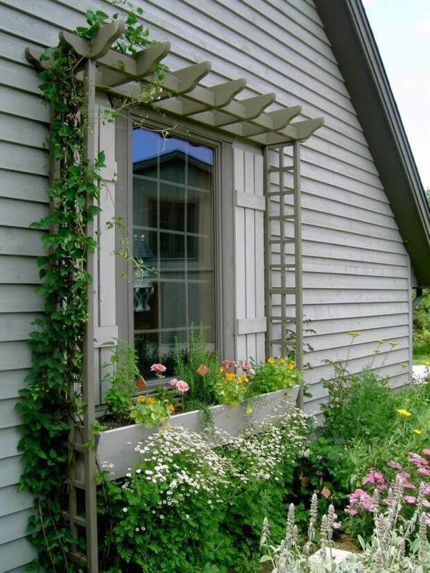 Красивые идеи оформления окна цветами