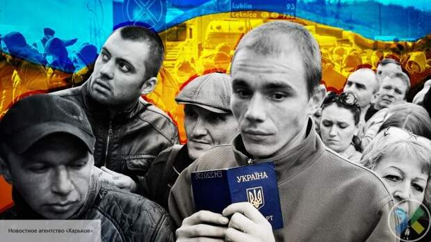 «У нас все сами по себе»: Гаспарян пояснил, почему украинских заробитчан не пустят в Европу