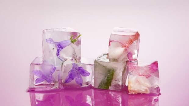 Криотерапия льдом в домашних условиях. Секрет красоты от Софи Лорен