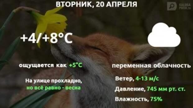 Прогноз погоды в Калуге на 20 апреля