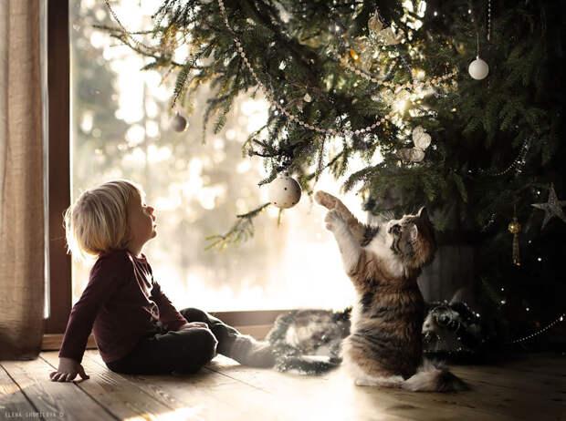 KidsWithAnimals18 Россиянка создает потрясающие фотографии своих детей с животными в деревне
