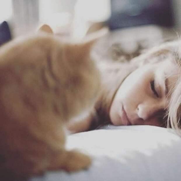 7 самых распространенных снов и что они означают