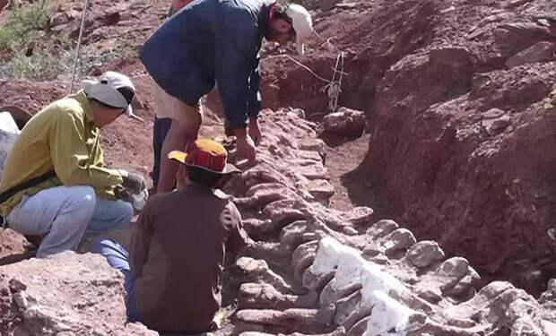 Динозавры размером с самолет: в Аргентине нашли самых больших ящеров в истории