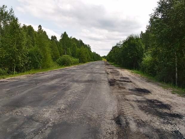 Транспортный обход Ялты могут проложить через заповедник