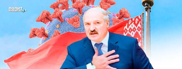 В Госдуме потребовали от Лукашенко сдать полномочия «с последней улыбкой на устах»