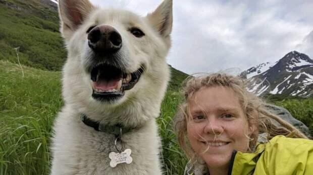 Хаски дважды спас глухую девушку, упавшую в реку на Аляске