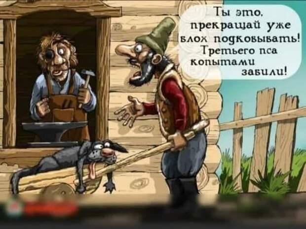 Грузин продает на рынке битых кур. Подходит хорошо откормленная баба...