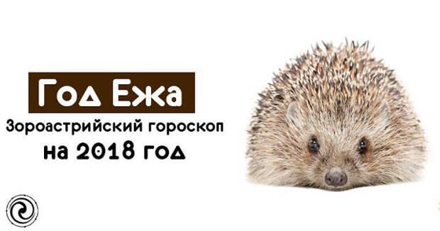 Год Ежа - Зороастрийский гороскоп на 2018 год