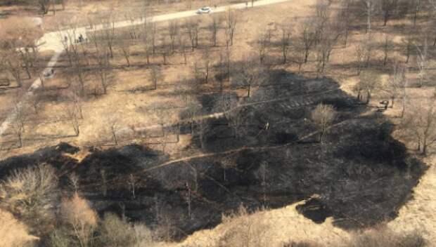 В Строгинской пойме подожгли сухую траву