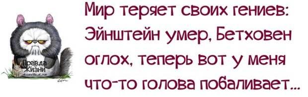 5672049_1382321915_frazochki27 (604x190, 31Kb)