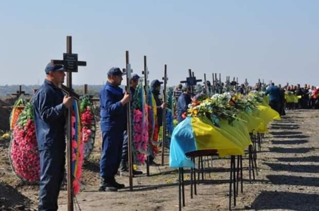 Киев позаботился об участниках АТО, выделив им под кладбище 80 га