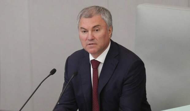 Володин поднял вопрос о повышении зарплат преподавателей вузов