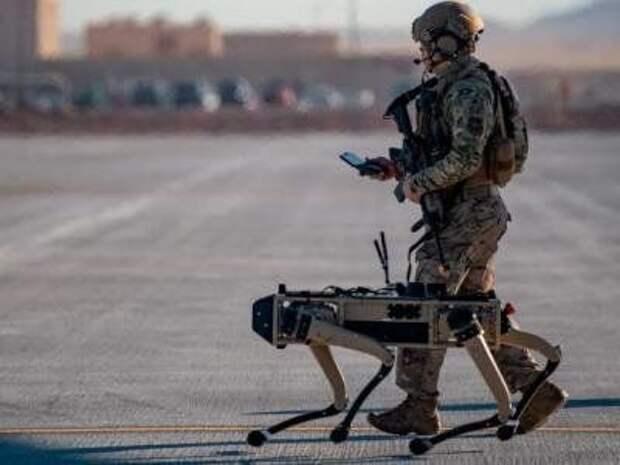 В ВВС США появились роботы-собаки