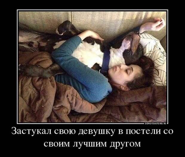 Прикол.ру