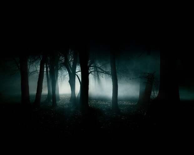 Загадки внезапного проявления тьмы