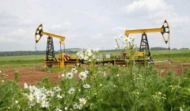 Экологическая модернизация обошлась «Роснефти» вболее чем $4млрд