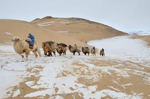 Непостижимая Монголия на снимках Марка Прогина