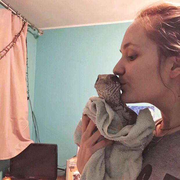 Холоднокровное, но любящее животное: степной варан - отличный домашний питомец