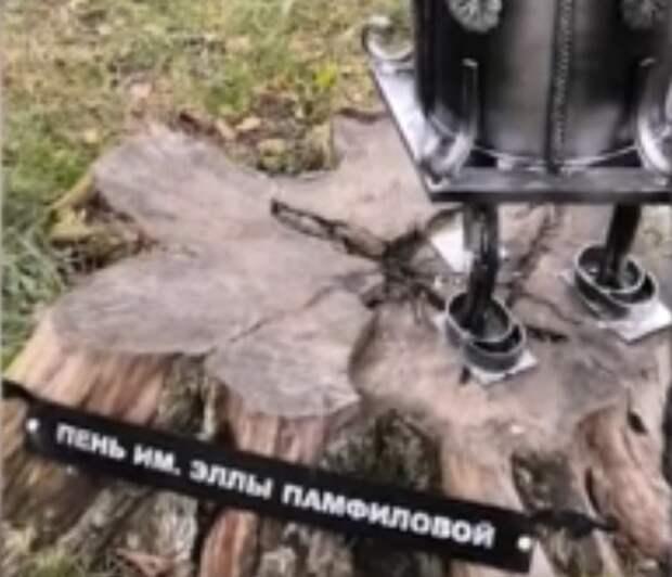 """В Вологде появился """"пень имени Эллы Памфиловой"""", но простоял недолго"""