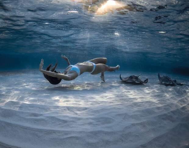 Захватывающие подводные фотографии ДжейсонаВашингтона