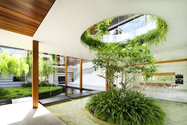 Деревья и комнатные растения в интерьере загородного дома – самый неожиданный и оригинальный тренд 2018 года.