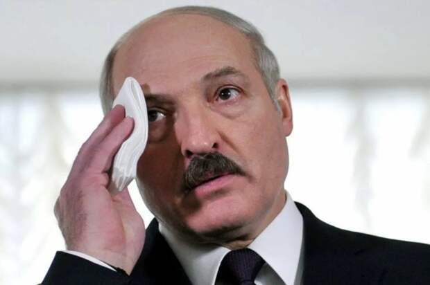 Суздальцев назвал главную цель «заговора» против Лукашенко