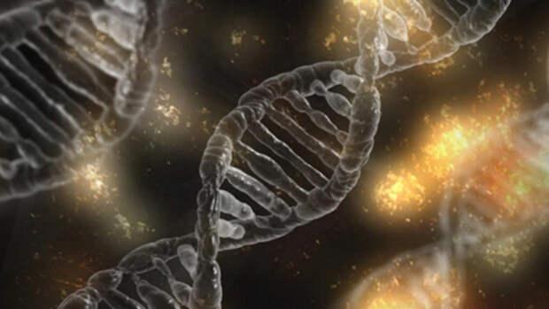 Редактируем геном. Как будут лечить болезни и замедлять старение