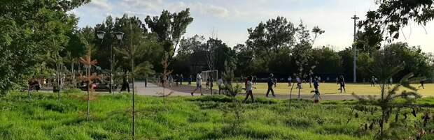 В Турксибском районе Алматы высадят 36 тысяч деревьев и благоустроят 9 скверов