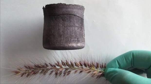 Ученые напечатали на 3D-принтере графеновый аэрогель для очистки воды