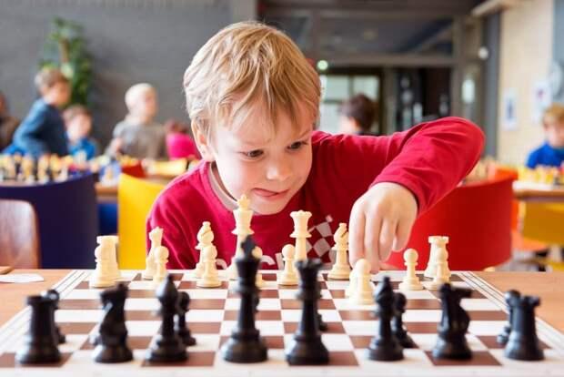 Онлайн-занятие шахматной секции «ЭПИ-Алтуфьево» пройдёт 9 июня