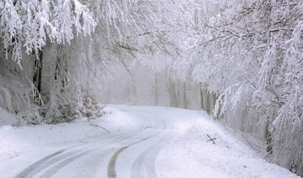 Мороз пообещали ростовчанам врабочую субботу