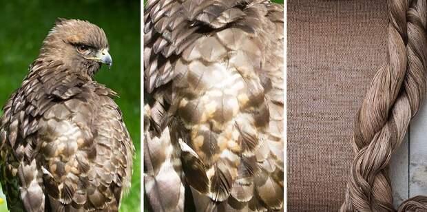 Идеальная пряжа для вязания, вдохновленная самой природой