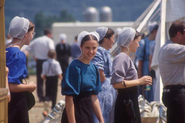 c3a2afaaf3daac63f1f308a0f6e06db3_Amish_LIVE_2[1].jpg