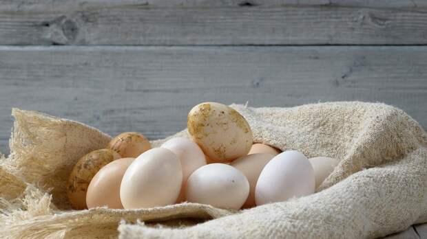 Определен самый полезный способ приготовления яиц