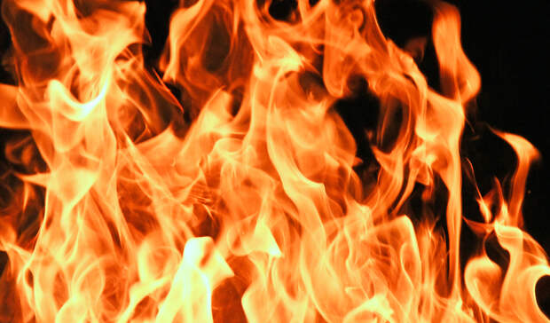 ВТурции число жертв лесного пожара возросло дотрех