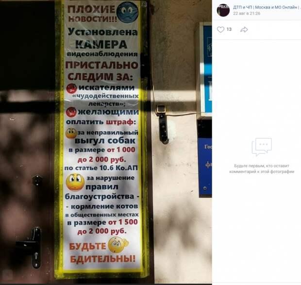 За выгул и кормление животных на улице Расковой жители получат штраф
