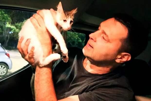 Мужчина 5 дней прикармливал котенка, чтобы спасти его