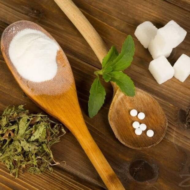 Стевия вместо сахара — польза и вред