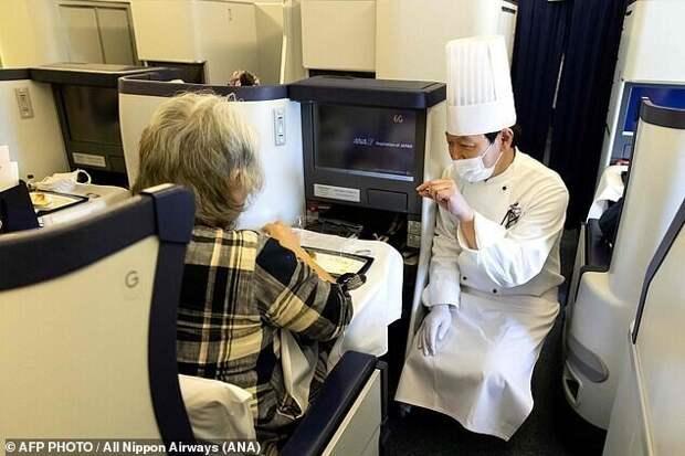 Японские авиаторы придумали, как заработать на земле