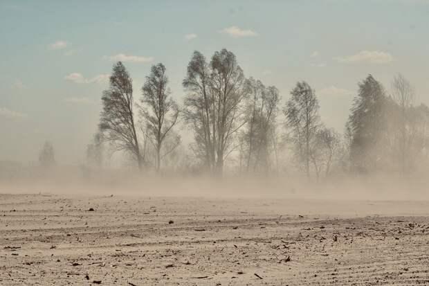 Желтый снег в Поволжье выпал после стихийного бедствия в Китае и Монголии