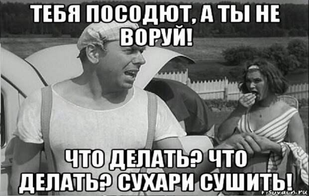 """ТЕБЯ ПОСОДЮТ - А ТЫ НЕ ВОРУЙ!"""""""