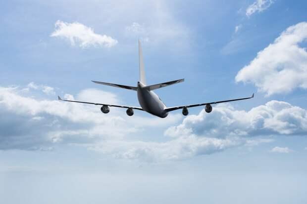 Лоукоста не будет: как изменятся цены на авиабилеты в 2021 году