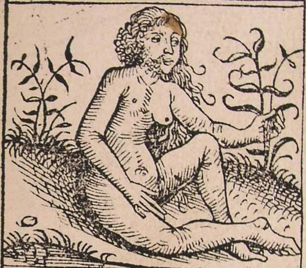 7 монстров Средневековья, в которых верили люди