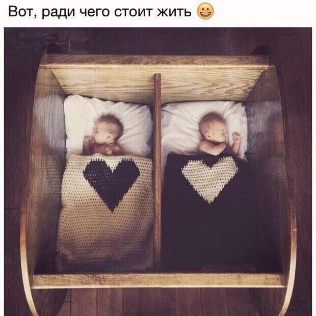 Подборка милых картинок и фото приколов из сети