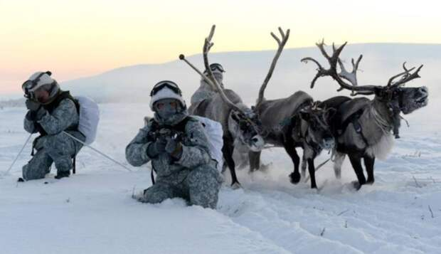 В Норвегии рассказали, чему стоит «поучиться» у российских военных