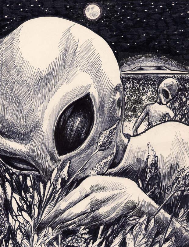 5 теорий о том, как выглядят инопланетяне