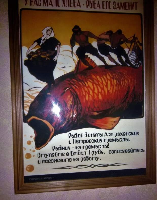 Каспийская сельдь: разрешена к вылову