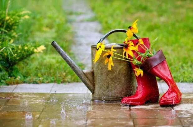 Прогноз погоды на 19 апреля: Местами пройдут дожди